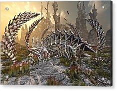 The Boneyard Acrylic Print by Mary Almond