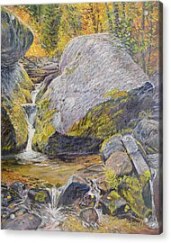 Acrylic Print featuring the painting The Boulder by Steve Spencer