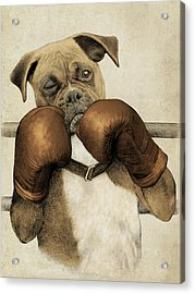 The Boxer Acrylic Print by Eric Fan
