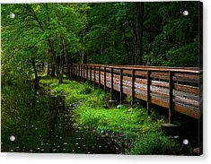 Acrylic Print featuring the photograph The Bridge At Wolfe Park by Karol Livote