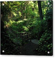 The Bridge Home Acrylic Print by Cliff Hawley