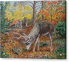 The Buck Stops Here Acrylic Print