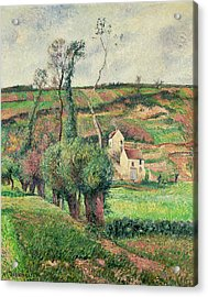 The Cabbage Slopes Acrylic Print by Camille Pissarro