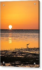 The Calm Side Acrylic Print by Marvin Spates