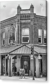 The Carey Building Black And White Acrylic Print by JC Findley