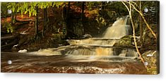 The Cascade Acrylic Print by David Bishop