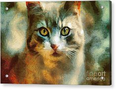 The Cat Eyes Acrylic Print