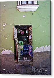 The Cat In The Doorway Acrylic Print by Ron Dubin
