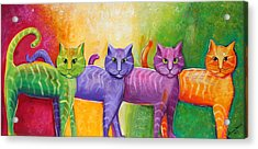 The Cat Walk Acrylic Print