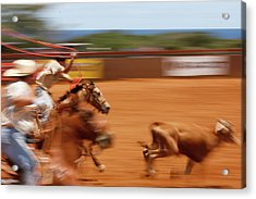 Acrylic Print featuring the photograph The Chase by Roger Mullenhour