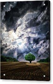 The Chosen Acrylic Print by Mark Fuller