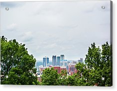 Acrylic Print featuring the photograph The City Beyond by Shelby Young