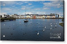 The Claddagh Galway Acrylic Print by Gabriela Insuratelu