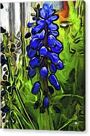 The Cobalt Blue Flowers And The Long Green Grass Acrylic Print