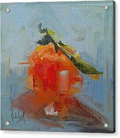 The Color Orange Acrylic Print by Barbara Andolsek