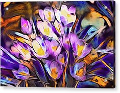 The Colors Of Crocus Acrylic Print