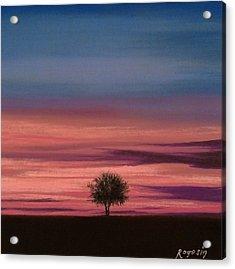 The Colors Of The Night Acrylic Print by Harvey Rogosin