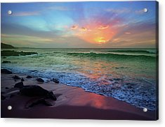Acrylic Print featuring the photograph The Colour Before The Darkness by Tara Turner