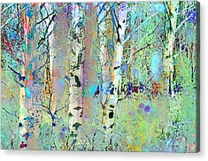 The Colouring Book In The Forest Acrylic Print