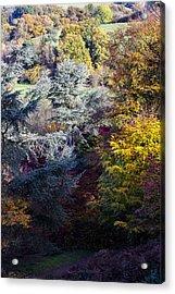 The Colours Of Autumn Acrylic Print