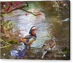 Acrylic Print featuring the photograph The Colours Of Spring by LemonArt Photography