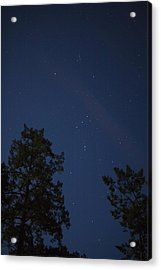 The Constellation Orion At Night Acrylic Print by Taylor S. Kennedy