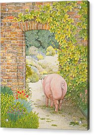 The Convent Garden Pig Acrylic Print