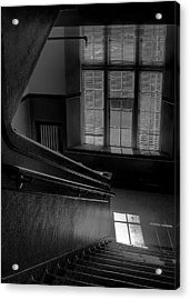 The Conversation Window Acrylic Print by David Patterson