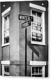 The Corner Of Winter And Spring Bw Acrylic Print
