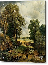 The Cornfield Acrylic Print by John Constable