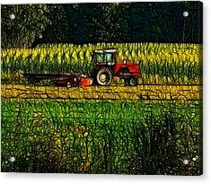 The Cornfield Acrylic Print by Kathleen Stephens