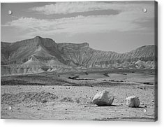 the couple of stones in the desert II Acrylic Print