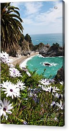 The Cove Acrylic Print by Digartz - Thom Williams