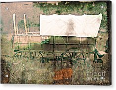 The Covered Wagon  Acrylic Print by Steven  Digman