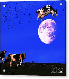 The Cow Jumped Over The Moon . Square Acrylic Print by Wingsdomain Art and Photography