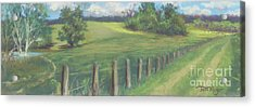 The Cow Path To The Pond Acrylic Print by Terri  Meyer
