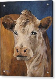 The Cow Acrylic Print by Torrie Smiley