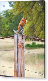 The Cowboy Boot Acrylic Print by Donna Greene