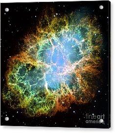 The Crab Nebula Acrylic Print by Nicholas Burningham