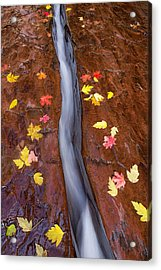 Acrylic Print featuring the photograph The Crack by Patricia Davidson