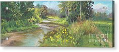 The Creek At 1302 Acrylic Print by Terri  Meyer