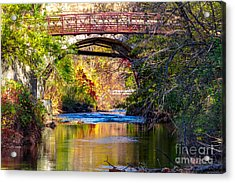The Creek Acrylic Print