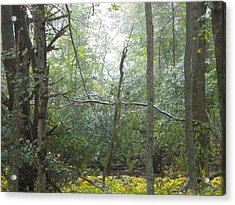 Acrylic Print featuring the photograph The Cross In The Woods by Diannah Lynch