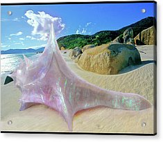 Acrylic Print featuring the sculpture The Crystalline Rainbow Shell Sculpture by Shawn Dall