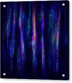 The Curtain Acrylic Print by Rachel Christine Nowicki