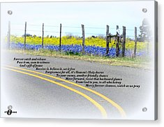 Freedom Around The Bend Acrylic Print by David  Norman