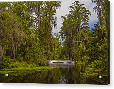 Acrylic Print featuring the photograph The Cypress Garden by Steven Ainsworth