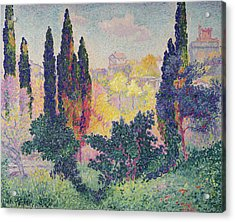 The Cypresses At Cagnes Acrylic Print by Henri-Edmond Cross