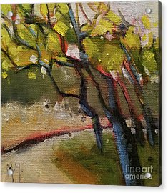 The Dance Abstract Tree Woods Forest Wild Nature Acrylic Print