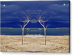The Dancing Trees 01 Acrylic Print by Arik Baltinester